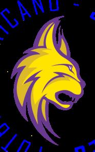 logo16-transparente